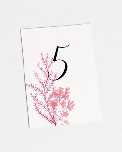"""Números de mesa """"Arrecife de coral"""""""